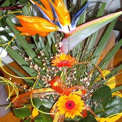 Blumen Villach | Blumen Richter